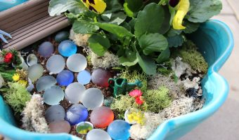 DIY: Tiny Tooth Fairy Garden