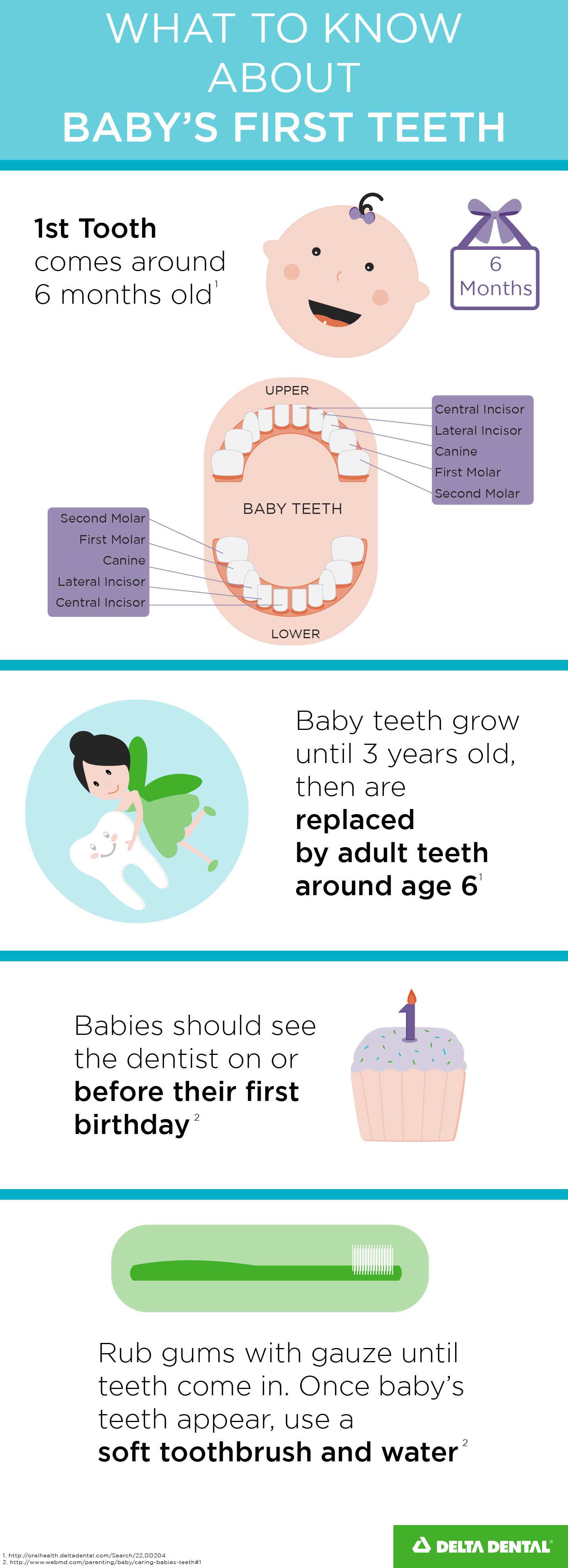 Dental Care For Babies Everything You Need To Know